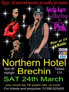Official Tribute To Pink Flyer